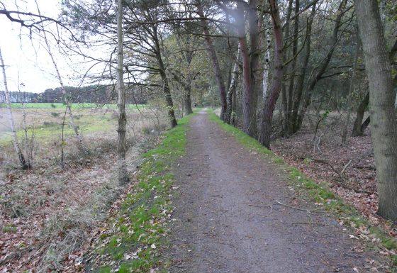 Geh- & Radweg im Naturschutzgebiet