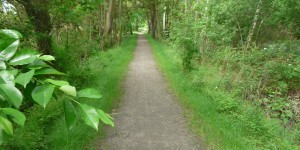 Geh- und Radweg Beeskow im Naturschutzgebiet